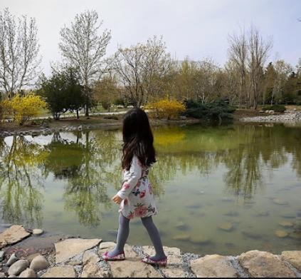 باغ سیستماتیک مجموعه گیاه شناسی ملی